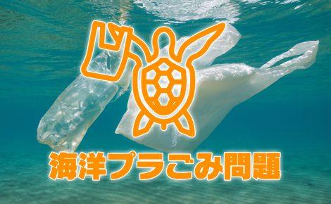 【環境対策】海洋プラごみとマイクロプラスチック