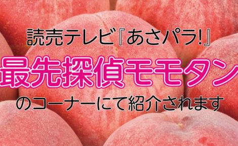 【メディア情報】読売テレビ『あさパラ!』にて当社製品が紹介されます